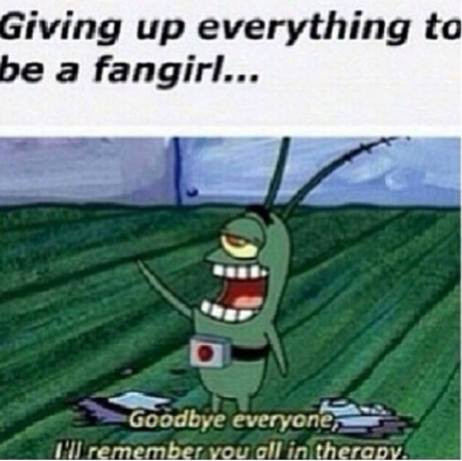 Giving up everything to be a fangirl