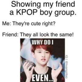 Kpop fan