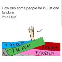 fandoms meme