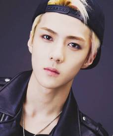 SEHUN (Lead Dancer, Rapper, Sub Vocals & Maknae)